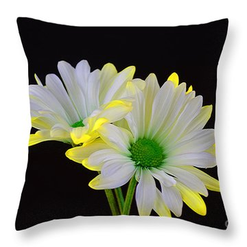 Beautiful Wonder Throw Pillow