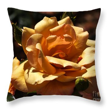 Beautiful Yellow Rose Belle Epoque Throw Pillow by Louise Heusinkveld