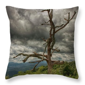 Beautifully Dead Throw Pillow