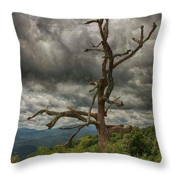 Beautifully Dead Throw Pillow