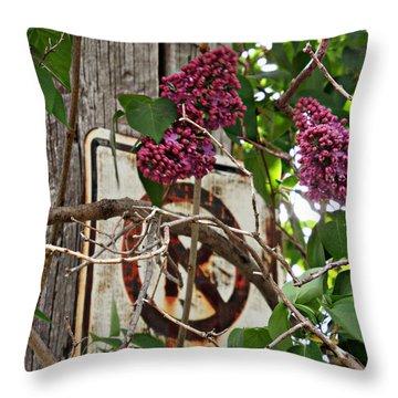 Beautifully Rustic Throw Pillow