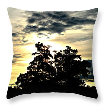 Beautifully Wasting Time Throw Pillow