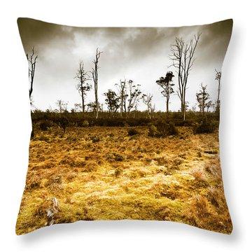 Beauty And Barren Bushland Throw Pillow