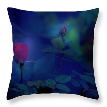 Beauty And The Mist Throw Pillow