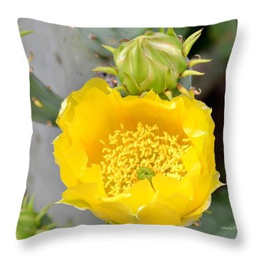 Beauty Begets Beauty Throw Pillow