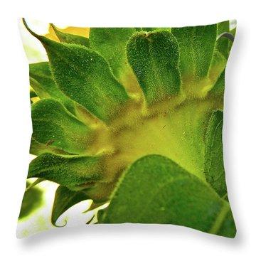 Beauty Beneath Throw Pillow by Randy Rosenberger