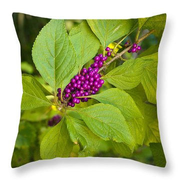 Beauty Berries Throw Pillow