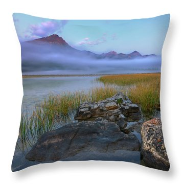 Beauty Creek Dawn Throw Pillow by Dan Jurak