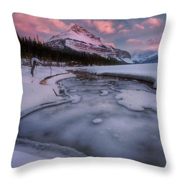 Beauty Creek, Jasper National Park Throw Pillow