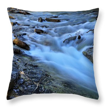 Beauty Creek Throw Pillow by Larry Ricker