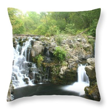 Beauty Falls Throw Pillow by Marty Koch