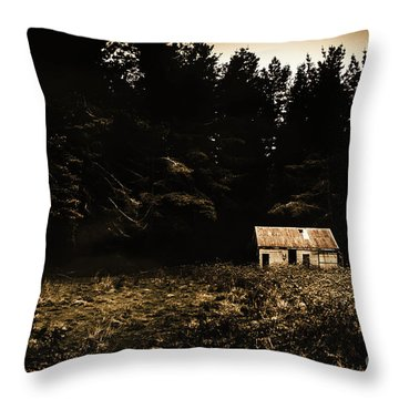 Beauty In Dilapidation Throw Pillow