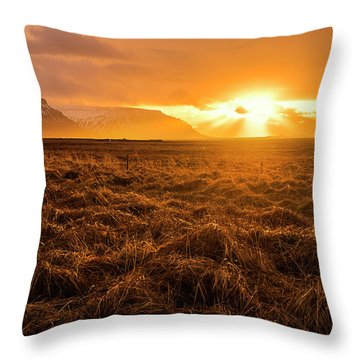 Throw Pillow featuring the photograph Beauty In Nature by Pradeep Raja Prints