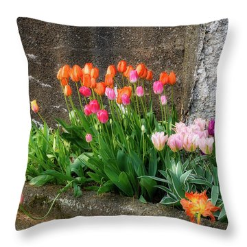 Throw Pillow featuring the photograph Beauty In Ruins by Michael Hubley