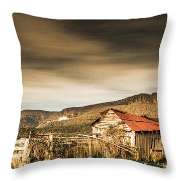 Beauty In Rural Dilapidation Throw Pillow