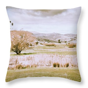Beauty In Rustic Gretna Throw Pillow
