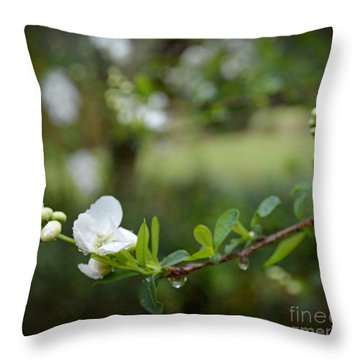 Beauty In Simple Things Throw Pillow
