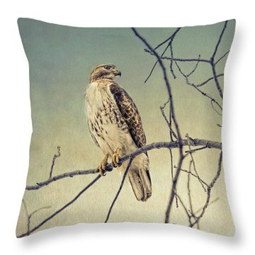 Red-tailed Hawk On Watch Throw Pillow