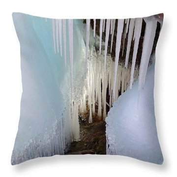 Beauty In The Ice Throw Pillow by Sandra Updyke