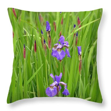 Beauty In The Rain Throw Pillow