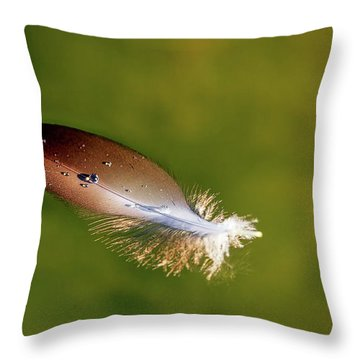 Beauty In The Simple Things Throw Pillow