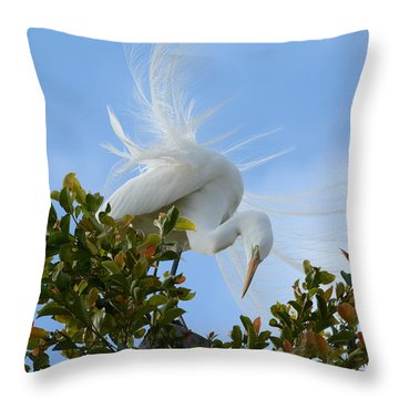Throw Pillow featuring the photograph Beauty In The Treetop by Fraida Gutovich