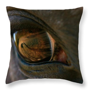 Beauty Is In The Eye Of The Beholder Throw Pillow by Angela Rath