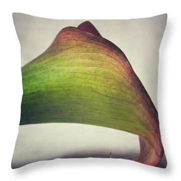 Throw Pillow featuring the photograph Beauty by Karen Stahlros