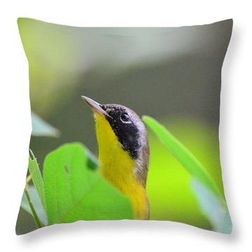 Beauty Throw Pillow by Kathy Gibbons