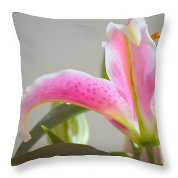 Throw Pillow featuring the photograph Beauty Marks by Deborah  Crew-Johnson