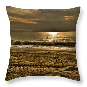 Beauty Of A Day Throw Pillow by Trish Tritz