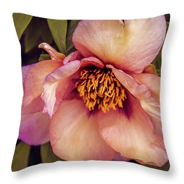 Throw Pillow featuring the photograph Beauty Of A Peony  by Julie Palencia