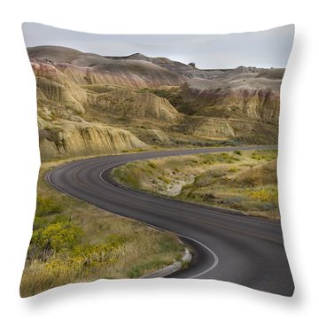 Throw Pillow featuring the photograph Beauty Of The Badlands South Dakota by John Hix