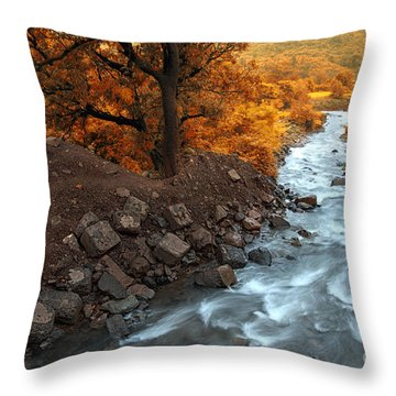 Beauty Of The Nature Throw Pillow by Charuhas Images