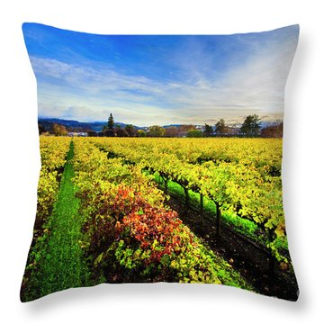 Beauty Over The Vineyard Throw Pillow