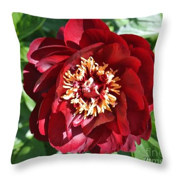 Beauty Peony Bloom Throw Pillow by Marsha Heiken