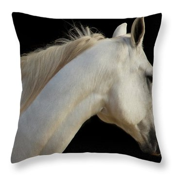 Throw Pillow featuring the photograph Beauty by Sharon Jones