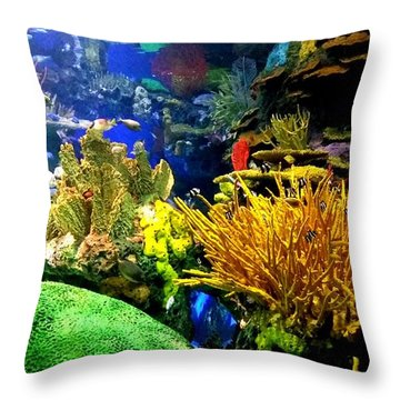 Throw Pillow featuring the photograph Beauty Under The Sea by Kelly Mills