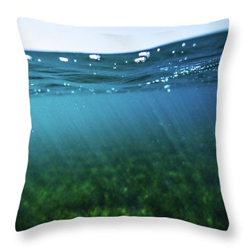 Beauty Under The Water Throw Pillow