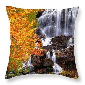 Beaver Brook Falls Throw Pillow