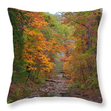 Throw Pillow featuring the photograph Beaver Creek Bridge by Jerry Bunger