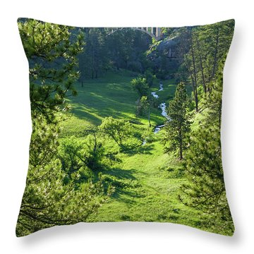 Beaver Creek In The Spring Throw Pillow