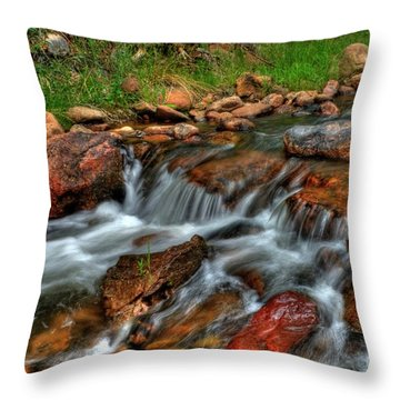 Beaver Creek Throw Pillow