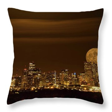 Beaver Moonrise Throw Pillow