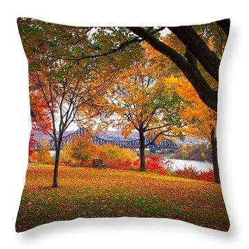 Beaver Park Throw Pillow