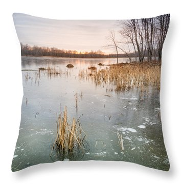 Throw Pillow featuring the photograph Beaver Place by Jola Martysz