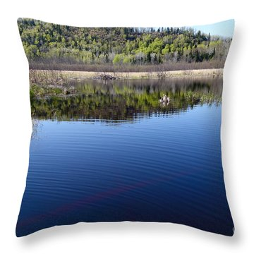 Throw Pillow featuring the photograph Beaver Pond Beauty by Sandra Updyke