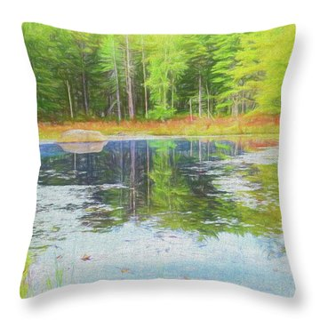 Beaver Pond Reflections Throw Pillow
