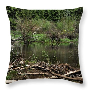 Throw Pillow featuring the photograph Beaver Pond by Ron Cline