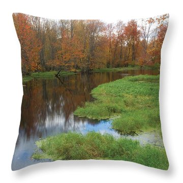 Beaver River Colors Throw Pillow
